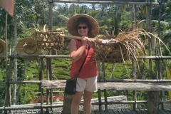 We Offer You Affordable Price and Best Tour Offer-Bali Rice Terrace
