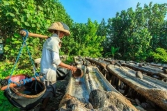 Kusamba Village -traditional salt mining - time to explore East Bali - Special offer today