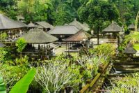bali tour to gunung kawi temple tegallalang - best price today