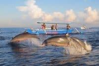 Lovina beach - bali tour package