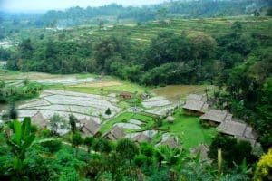 Pacung rice terrace-tour recommendation-bali tour package